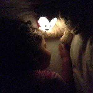Mickey Softpal, in de nacht
